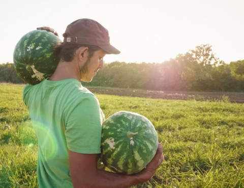Young male holding two watermelons